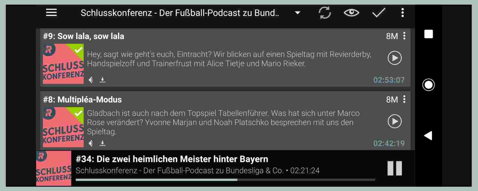 Rasenfunk-Podcast (Podcast-App-Ansicht)